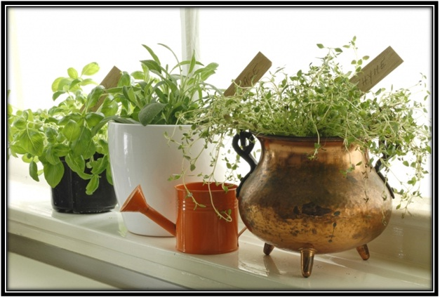 making a space for plants in the windows