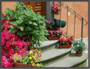 staircase pots decoration ideas
