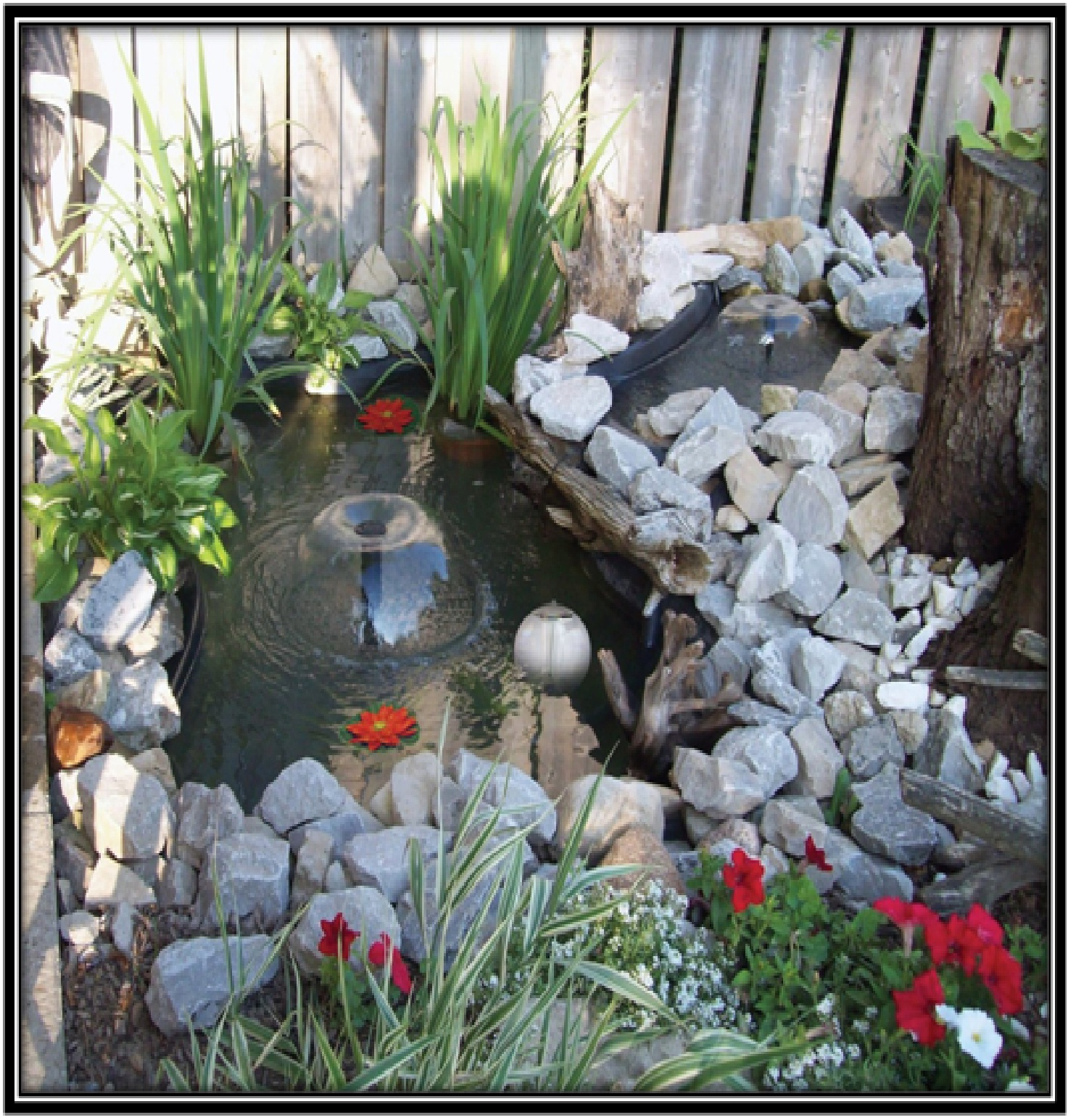 Pond Kit with amazing lightening - home decor ideas