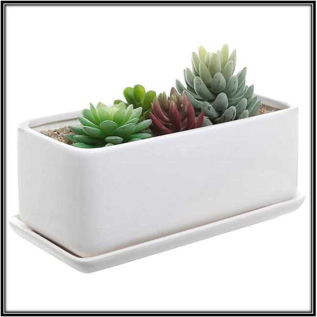 Planter Pot With Sacer Home Decor Ideas