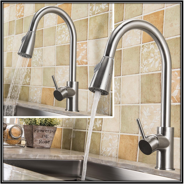 Water Sprayer Kitchen Design Ideas