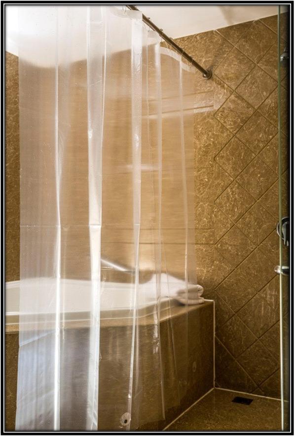 Shower Curtain Home Decor Ideas