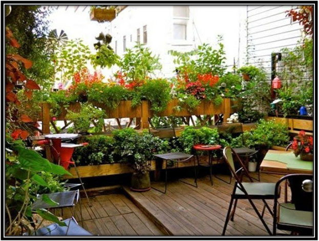 Converting Terrace Into A Garden Terrace Decor Ideas