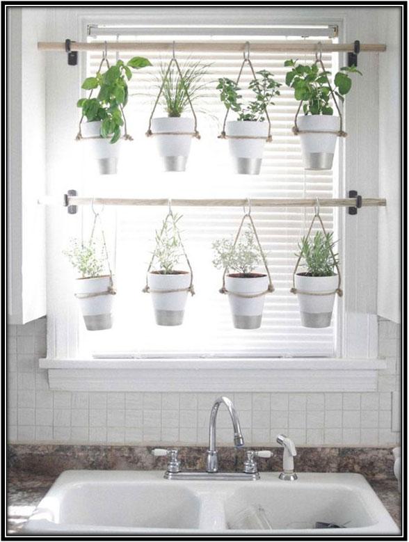 Hanging Plants Home Decor Ideas