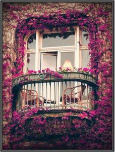 Balcony Border Diy Garden Ideas