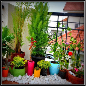 Decorating the space with colorful pots and stones