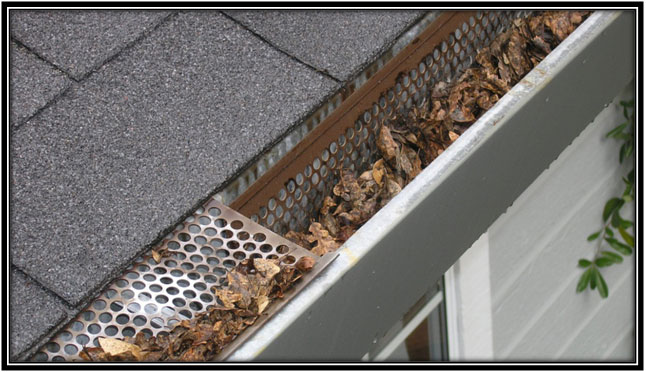 Get Gutters Clean to Prevent Functional Damages