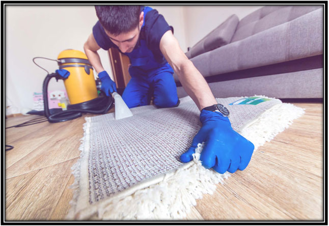 Carpet Cleaning Methods For Your Home