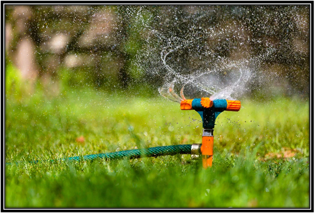 Hose and sprinklers