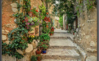 Inspiring Gardening Tips and Ideas for Small Gardener