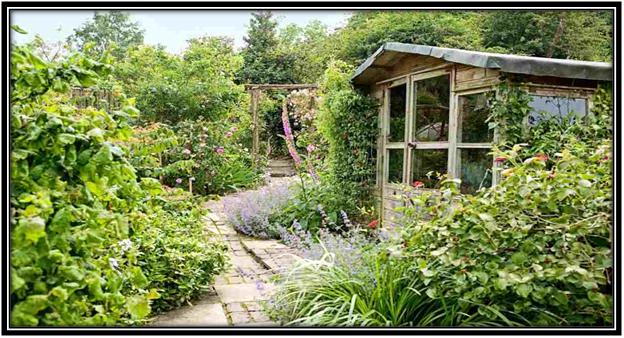 Gardening in Outdoor Shades